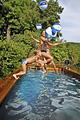 Biotope ou piscine