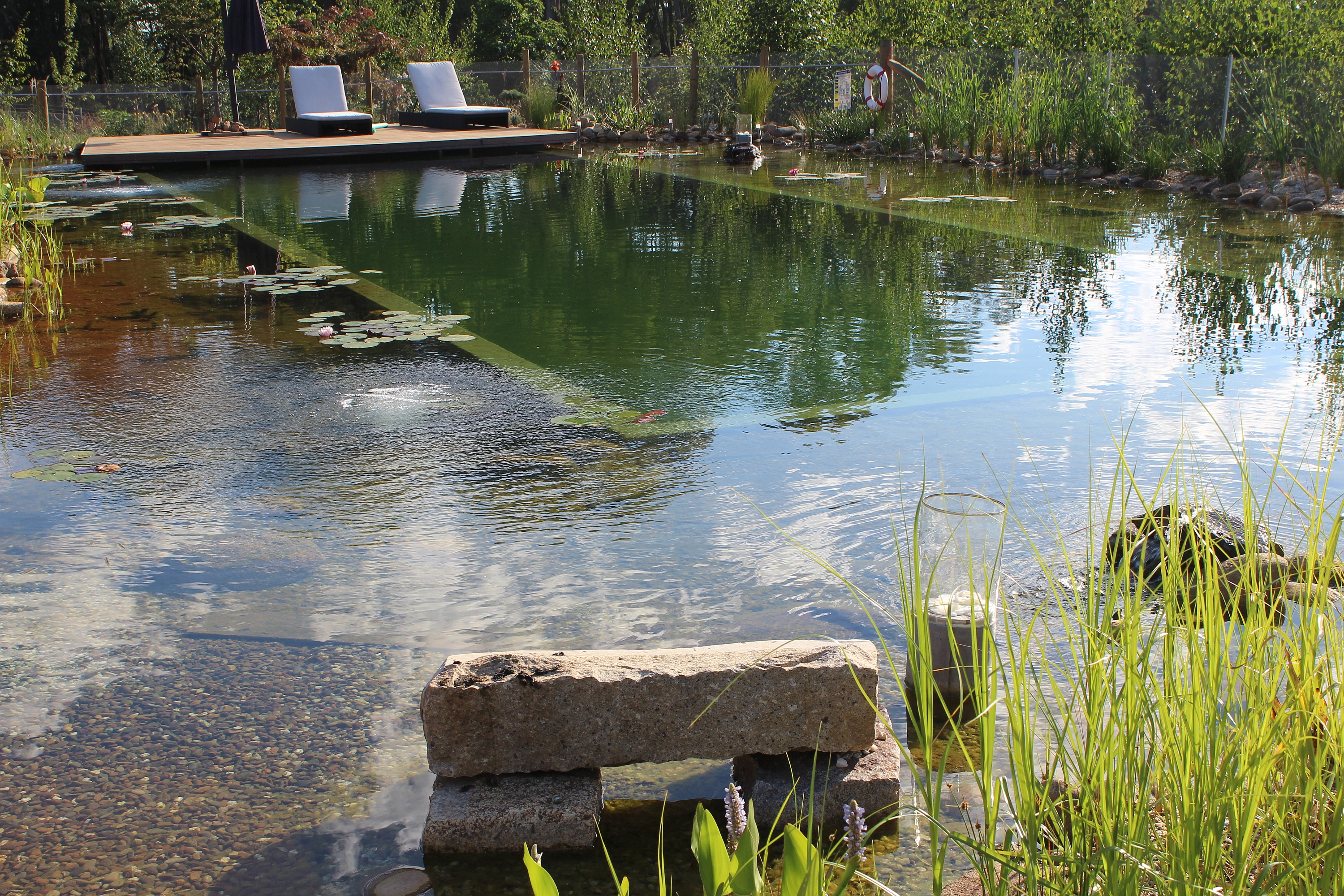 1000 images about natural pool on pinterest natural for Sustainable pool