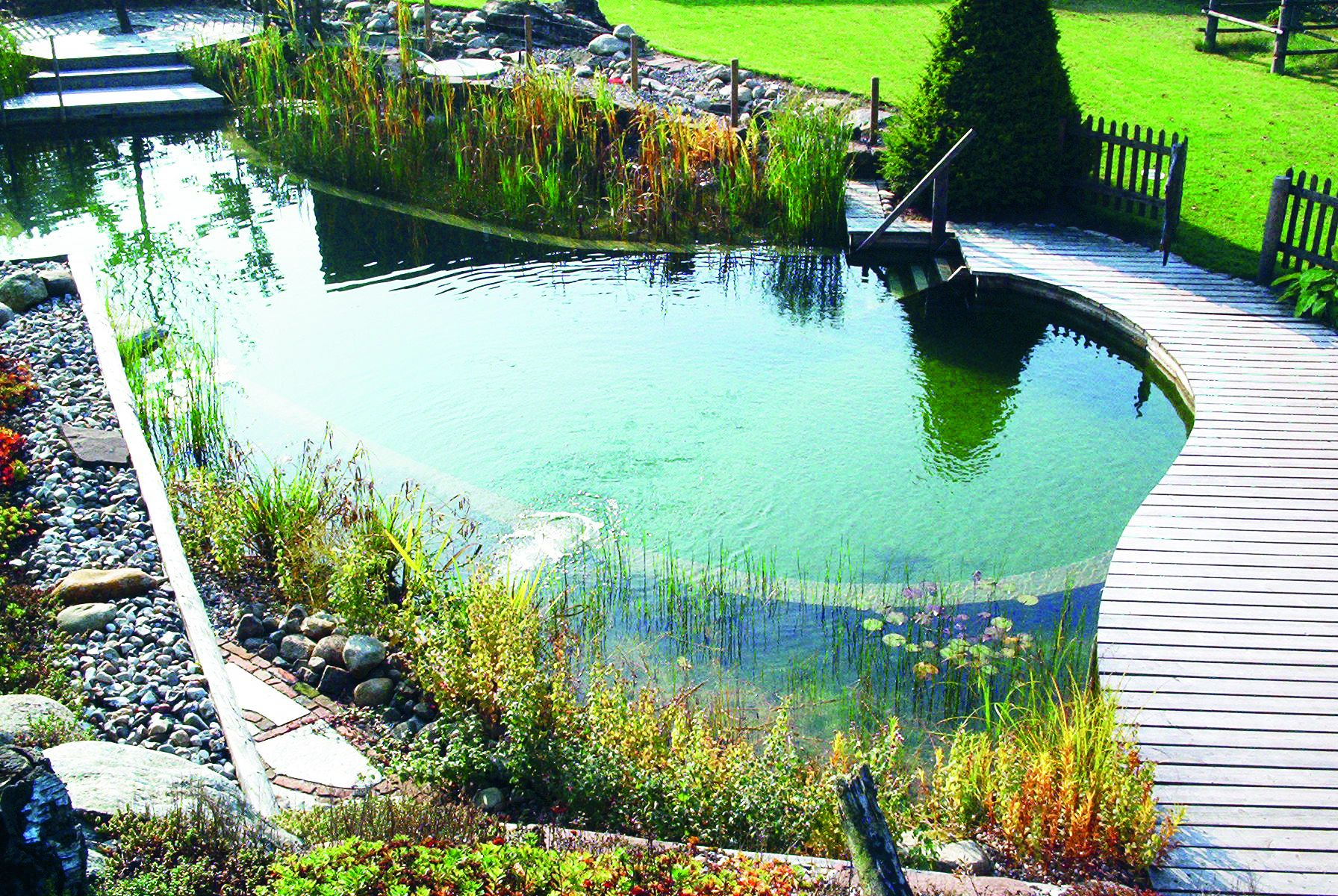 Biotop natural pools garden ponds nature pools for Piscinas ecologicas