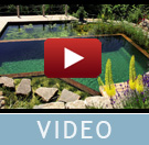 Swimming-Teich Video