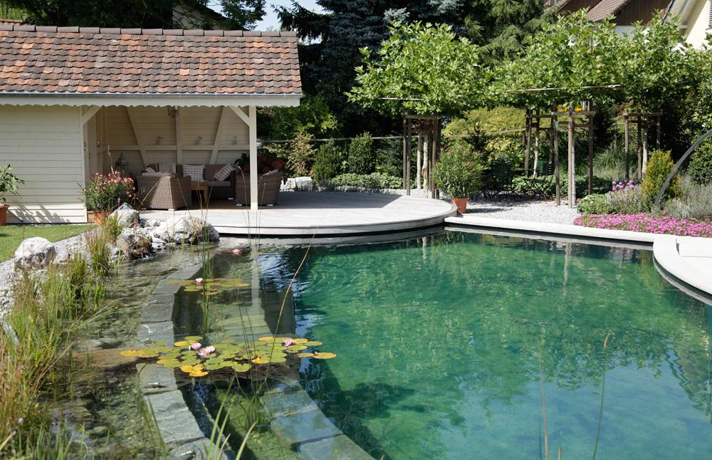 biotop zwemvijvers tuinvijvers natuurvijvers