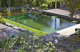 Best of Natural Pool