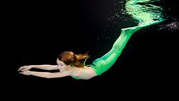 Biotop schwimmteiche gartenteiche naturpools for Naturteich zum schwimmen