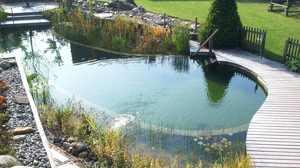 Biotop Natural Pools Garden Ponds Nature Pools
