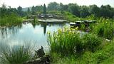 Referenzen - NATUR Teich