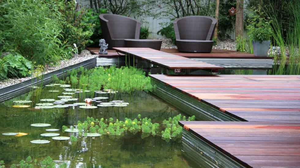 Biotop schwimmteiche gartenteiche naturpools for Teich design
