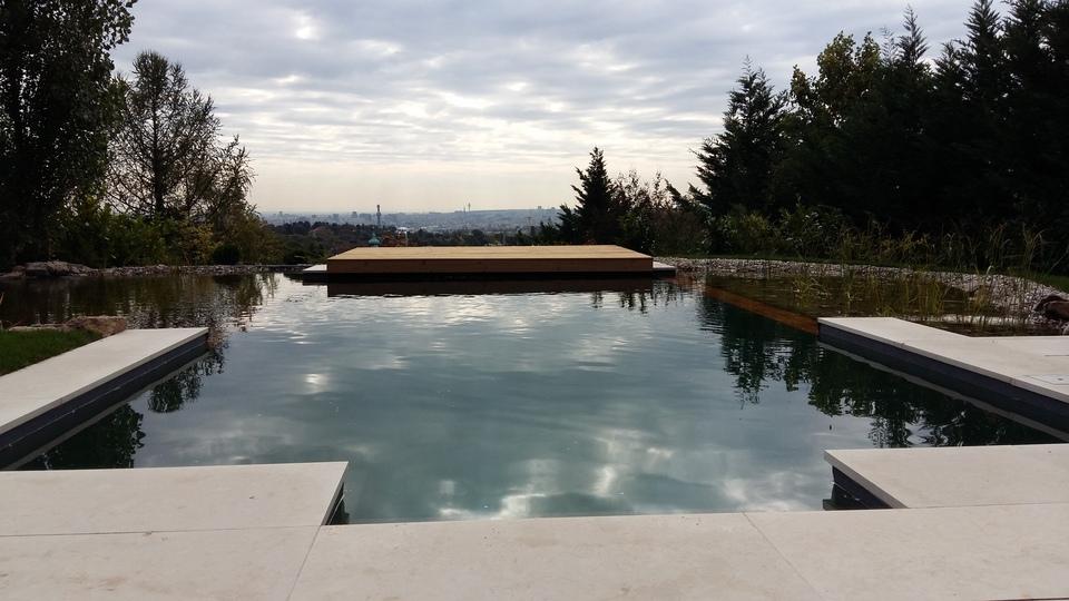 Biotop zwemvijvers tuinvijvers natuurvijvers for Pool design gmbh