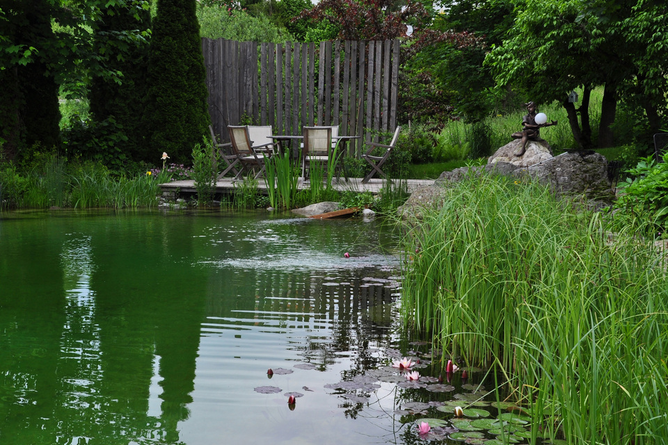 biotop zwemvijvers tuinvijvers natuurvijvers. Black Bedroom Furniture Sets. Home Design Ideas