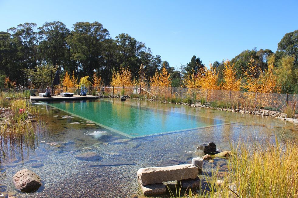 Biotop natural pools garden ponds nature pools for Natural swimming pools australia